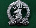 Rare Morgan Academy, Chromed CCF Cap Badge