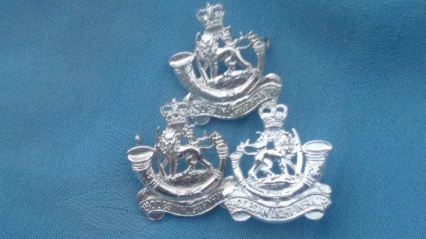 The Rhodesian Light Infantry cap badge/collar badges.