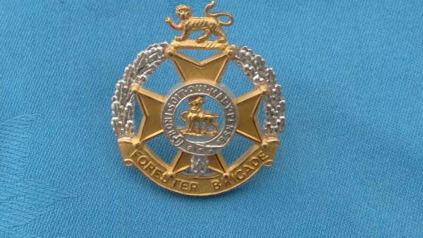 The Foresters Brigade Officers cap badge.