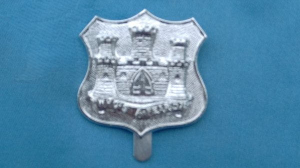 The Dorset Territorials cap badge.