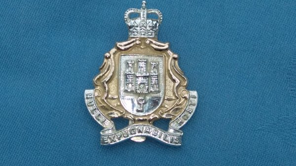 The Gibraltar Regiment cap badge/collar badges.