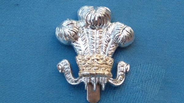 The Wiltshire Yeomanry cap badge.
