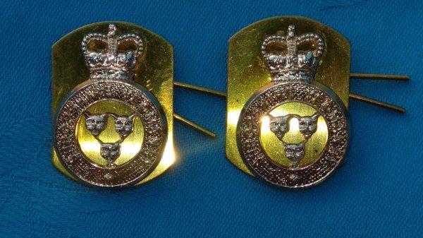 The Shropshire Yeomanry collar badges.