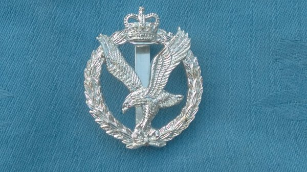 The Army Air Corp cap badge&collar badges.