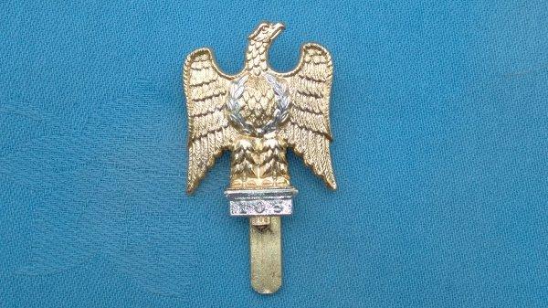 The 1st Royal Dragoons cap badge.