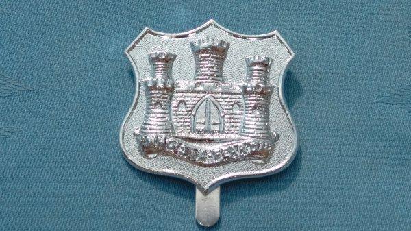 The Dorsetshire Territorials cap badge.