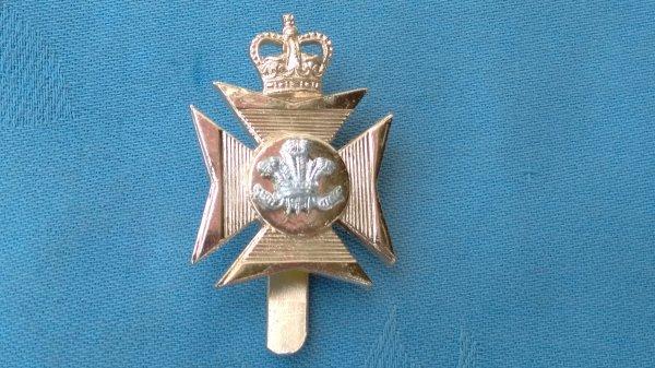 The Wiltshire Territorials cap badge.