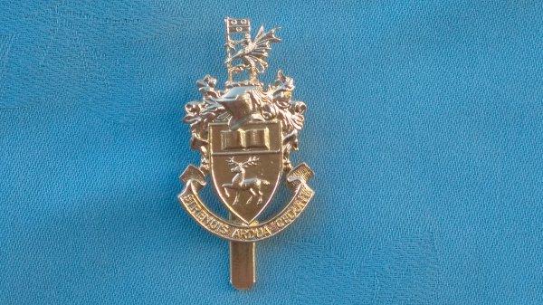 The Southampton University cap badge.