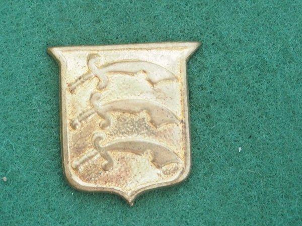 Essex Regiment cadet collar badge