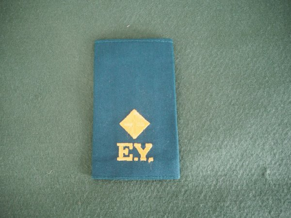 Essex Yeomanry working dress rank slide