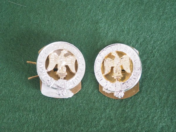 R Anglian AA collar badge pair