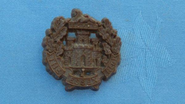 The Essex Regiment Plastic cap badge.