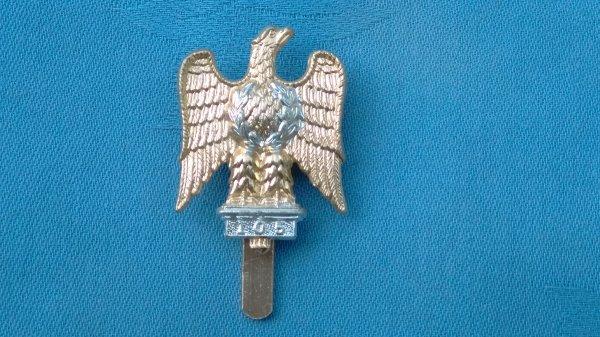 The Royal Dragoon Guards cap badge.