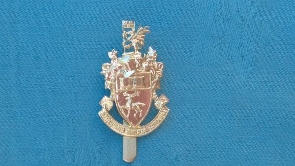 The Southampton University Officer Training Corp cap badge.