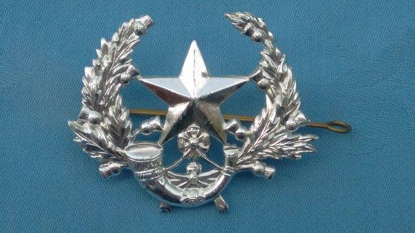 The Cameronians Scottish Rifles cap badge.