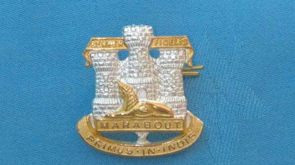 The Devonshire&Dorsetshire Regiment Officers cap badge.