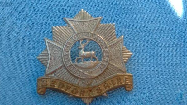 The Bedfordshire Regiment cap badge.