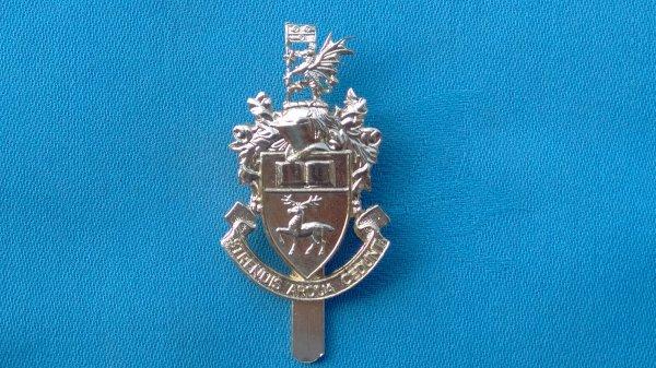 The Southampton University Officer Training Corp cap badge.