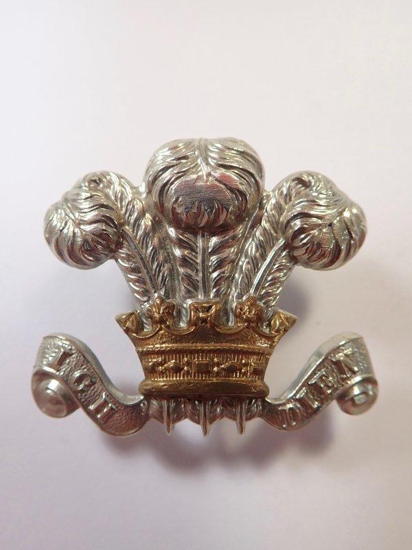Royal Wilsshire Regiment original Cap/Collar Badge.