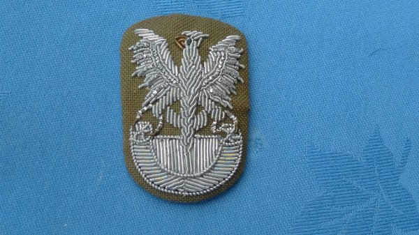 Polish Army Officers Bullion Cap badge.